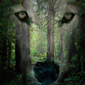 Shamanic – tantric journey to the Places of Power, Lithuania