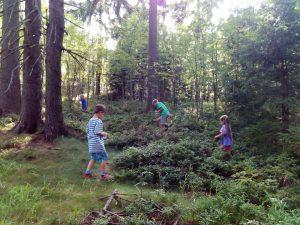 Wróć do Natury razem z dzieckiem!