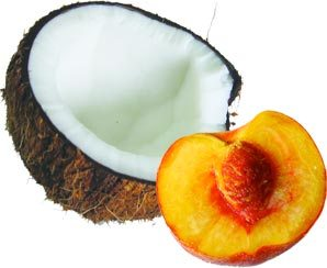 Women-peaches and men-coconuts:) — exploring the nature of femininity and masculinity